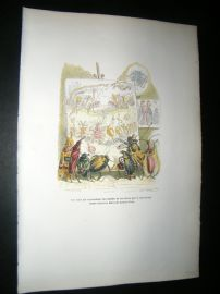 Grandville des Animaux 1842 Hand Col Print. Insects Recreating Battle